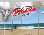 Pegasus Tour Ltd