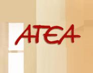 ATEA Ltd