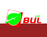 BULLES GROUP LTD