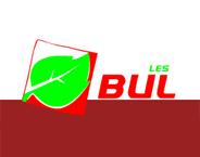 Bulles Group Ltd
