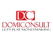 Domiconsult Ltd.