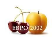 Euro 2002