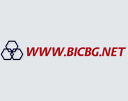 Bulgarian Internet Company Ltd