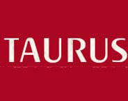 Taurus Consultants