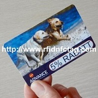 Red Fox RFID Tags Factory  - Invest Bulgaria.com