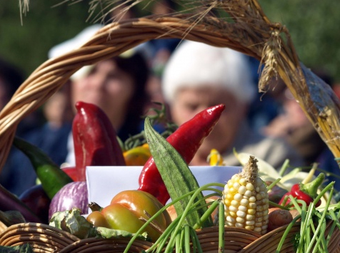 ISRAEL TO INVEST IN BULGARIAN AGRICULTURE PRODUCTION