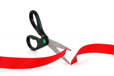 BULGARIA REPORTS MODERATE PROGRESS IN CUTTING RED TAPE
