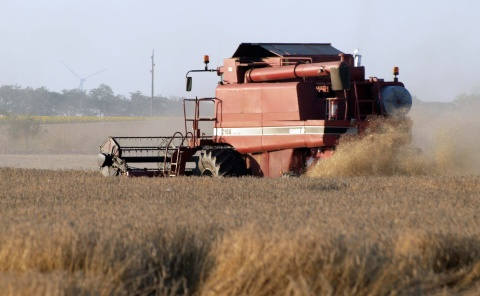 Bulgaria's 2011 Wheat Production Surpasses Expectations