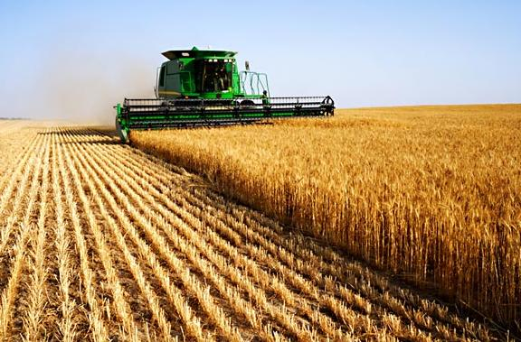 BULGARIA EXPECTS WHEAT HARVEST OF 3.8 M TONS IN 2012