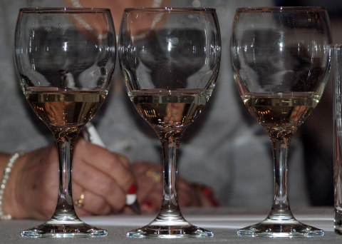 Bulgarian-Romanian Fest to Present 'Danube Wine Destinations'